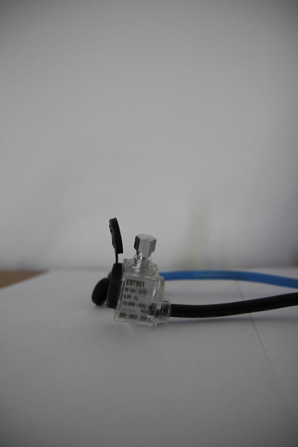 EBPC fouet électrique